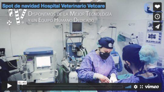 Spot de navidad Hospital Veterinario Vetcare